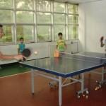上海乒乓球培训